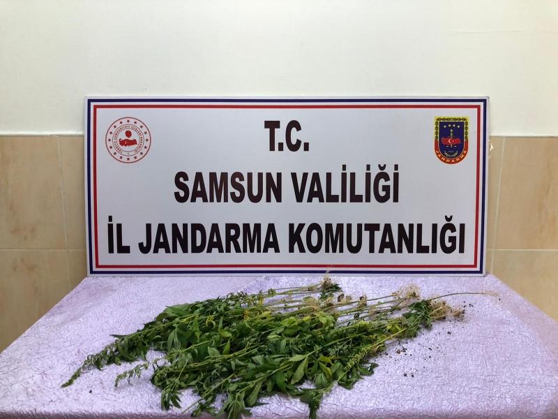 ALAÇAM JANDARMA TAKİPTE